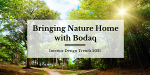 Bringing Nature Home with Bodaq - Blog Post Featured Image