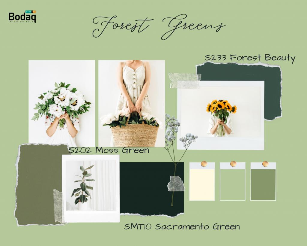 Bodaq Interior Film Forest green palette